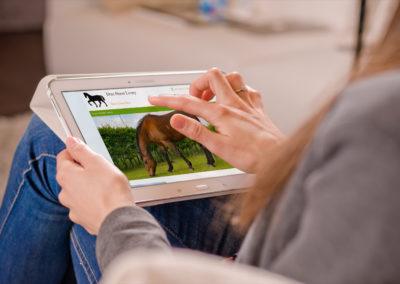 Drax Horse Livery